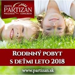 Partizan-1